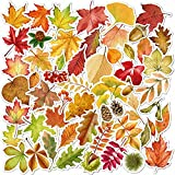 55 Pcs Fall Leaf Stickers Thanksgiving Autumn Maple Leaf Decal Stickers for Scrapbooking Water Bottles Laptop Hydroflask Luggage Skateboard Vinyl Sticker Waterproof Decals for Teens Girls Adults