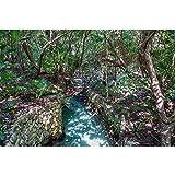 SANSHUI Jigsaw Puzzle Vacaciones Selva Turismo Paisaje Natural De Madera De Descompresión Entretenimiento Juego De Alta Dificultad IQ Challenge 500-6000 Piezas 1009 (Size : 1000 Pieces)