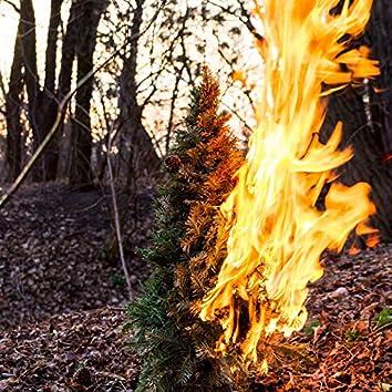 Burning Down the Xmas Tree