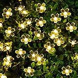 Best Solar Powers - Epyz Solar Sakura Flower String Lights, 19.5ft 30 Review