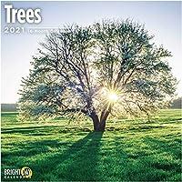 Bright Day Calendars 2021木の壁カレンダー バイ 明るい日、12 x 12 インチ、森美しい季節