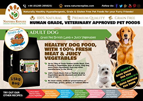 NATURES REPLIES: Natural Healthy Human Grade Veterinary Approved Grain Gluten Rice Free Best ADULT Dog Food Grass Fed British LAMB in 15Kg Bags. Aids Joints and Bones Mobility Cognitive Function Visual Development Reduces Inflammation Hypoallergenic Pet Foods Nutrition Clean Dog Food Mats & Bowls. Use as Kibble Edibles or Healthy Treats for ALL Breeds and Dog Training. ONLINE FREE FAST DELIVERY