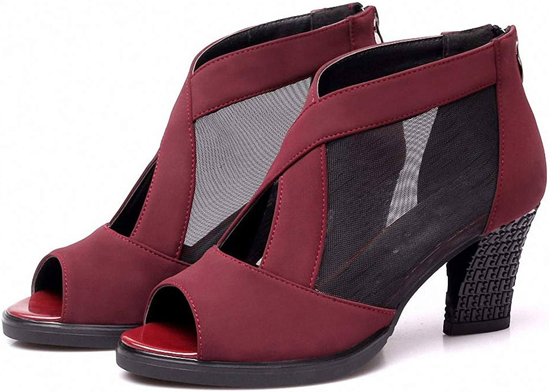 Womens High-Heeled Pumps shoes Spring Summer Fashion Mesh T-Strap Pumps Woman Peep Toe Cool High Square Heel Women shoes