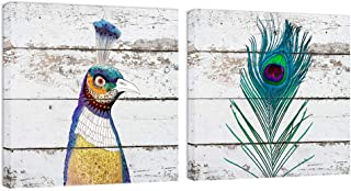 BOLUO Peacock Feathers Painting Framed Canvas Wall Art Decor Vintage Wood Texture Prints Home Decorations (2pcs(12