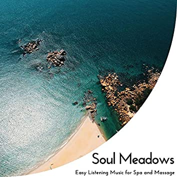 Soul Meadows - Easy Listening Music For Spa And Massage