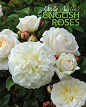 Best david english roses Reviews
