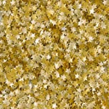 Wilton Edible Glitter, Gold Stars, 0.04 Ounce...
