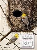 Carnets secrets d'un ornithologue