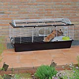 Ferplast Cage pour Lapins CASITA 120, Cochons d inde Petits Animaux, Toit Arrondi Ouvrable, avec Accessoires