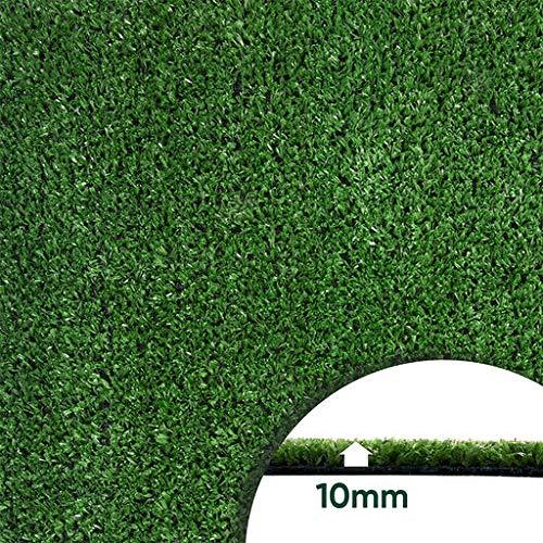 LITA Artificial Grass Turf Lawn-2FTX51FT, 0.4