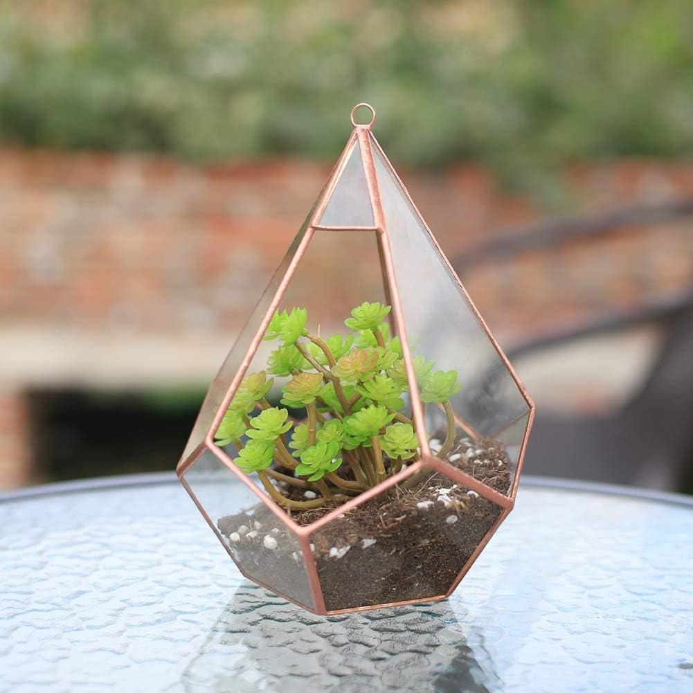 The Fellie Macetas de cristal modernas art/ísticas transparentes geom/étricas terrario de cinco superficies de diamante suculento helecho musgo terrario con lazo colgante de cobre
