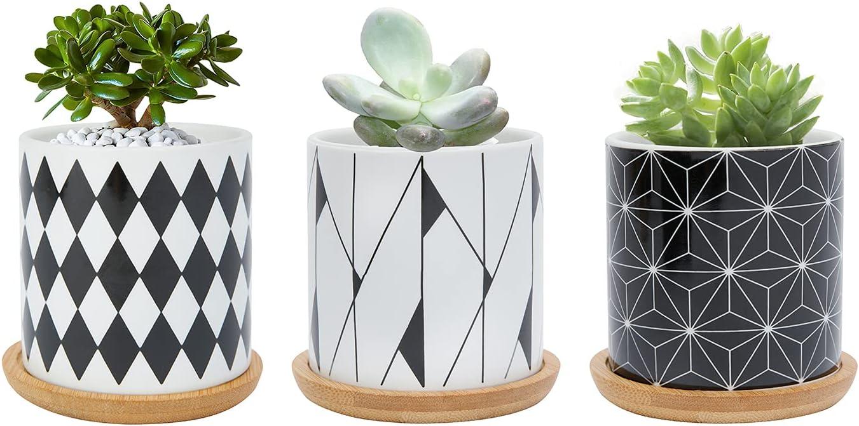Surprise price Succulent Pots Warmplus 3 inch Geometric Drain with Be super welcome Planter Pot