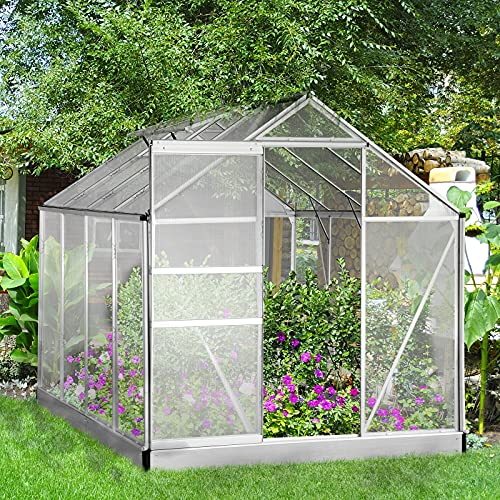 Aoxun Outdoor Stable Green House with Adjustable Roof Vent and Rain Gutter for Plants, Polycarbonate Walk-in Garden Greenhouse for Flowers in Winter, 8 x 6 FT