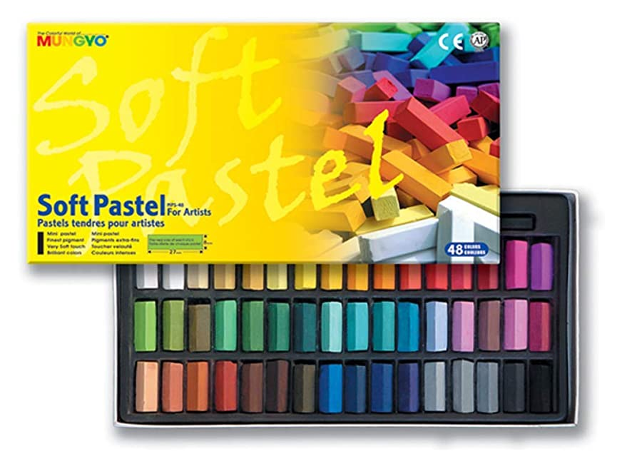 Non Toxic Mungyo Soft Pastel Set of 48 Assorted Colors Square Chalk f8407164970