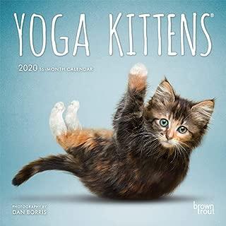 Yoga Kittens 2020 7 x 7 Inch Monthly Mini Wall Calendar, Animals Humor Kitten (Multilingual Edition)