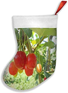 ANJISY Christmas Stockings Bonners Ferry Nursery Classic Red and White Mercerized Velvet for Family Holiday Xmas Party Decorations