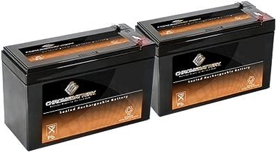 12V 9AH SLA Battery for Razor e200 / e200s / e225 / e300 / e300s / e325-2PK