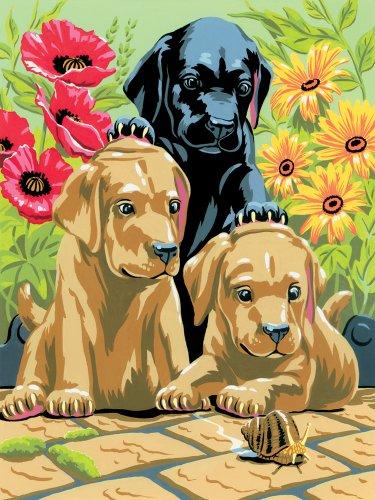 Royal & Langnickel PJS30 Peinture d'après les chiffres Taille A4 Chiots labrador