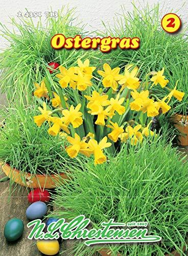 Ostergras N.L.Chrestensen Samen 24351713