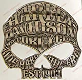 Adesivi Compulsivi - Escudo/calcomanía con logo Harley Davidson, Skull Willie G - Adhesivo resinado - Efecto 3D - Para depósito o casco - Color plata