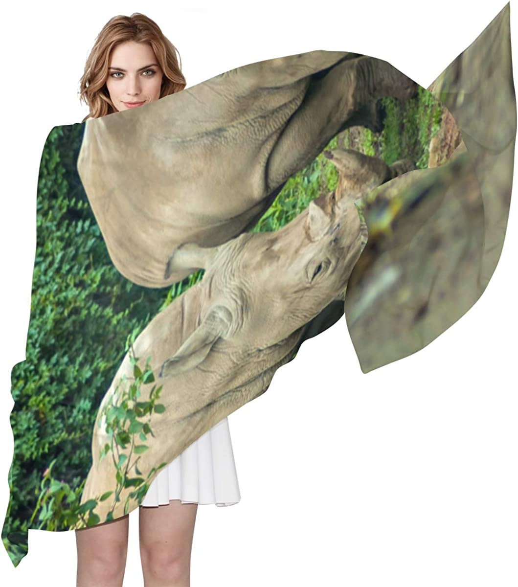 A Black Rhinoceros Mother And Calf Unique Fashion Scarf For Women Lightweight Fashion Fall Winter Print Scarves Shawl Wraps Gifts For Early Spring
