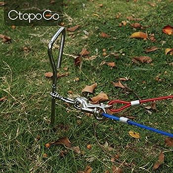 CtopoGo 10ft/16ft/33ft - Câble d'attache pour Chiens,Chien Cravate câble, câble de Cravate pour Animaux, Animaux de Compagnie Plomb pour Petit/Moyen Taille (5m, Bleu)