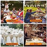 Telgoner Tischdeckenklammer Edelstahl, 12 Stück Draußen Tischtuchklammern Tischdeckenhalter Tischtuch Klein Klemme Clips für Dicke Tische Gartentisch, Silber, 5 x 4 cm - 7