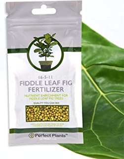 Fiddle Leaf Fig Slow-Release Fertilizer by Perfect Plants - Apply Every 6 Months for Nutrient Enrichment - 5 Oz. Bag for Indoor and Outdoor Use on All Fig Tree Sizes