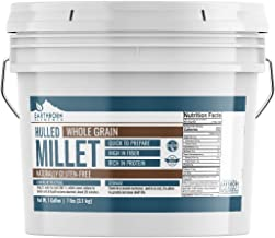 Hulled Millet, 1 Gallon Bucket (7 LBS) by Earthborn Elements, Gluten-Free Whole Grain, High-in-Fiber, Protein-Rich and Perfect for Baked Goods, Hot Cereals, Casseroles, Side Dishes, Resealable Bucket