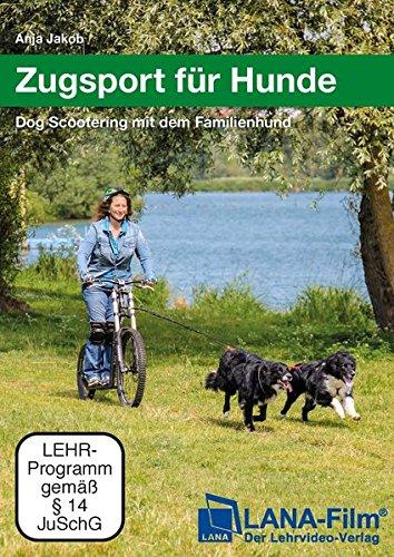 Zugsport für Hunde: Dog Scootering mit dem Familienhund