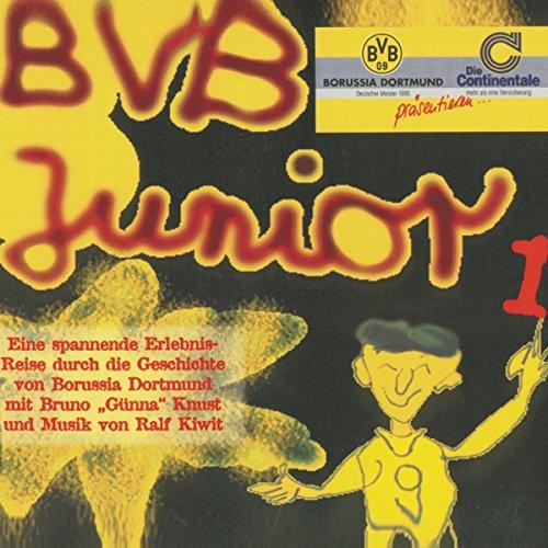 BVB Junior 1 audiobook cover art
