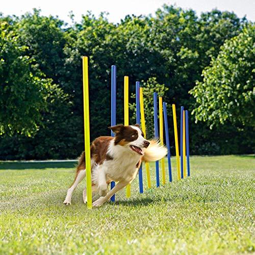 Pet Prime Dog Agility Equipment Set - 12PCS Weave Pole Set, Outdoor Dog Obstacle Agility Training Exercise Equipment Kit