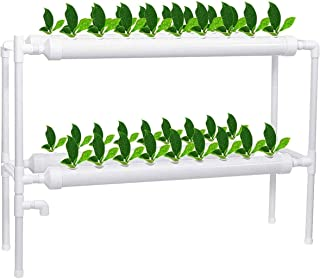 Hydroponic Growing System, 2 Layers 36 Plant Sites Water Culture Garden Plant System Leafy Vegetables Lettuce Herb Celery ...