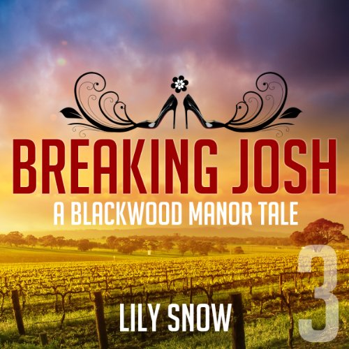 Breaking Josh 3 audiobook cover art