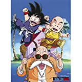ABYstyle - DRAGON BALL - Poster - Kame Team (52x38)