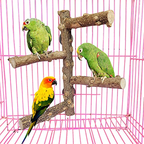 PINVNBY Parrot Perch Nature Wood Prickly Bird Stand Conure Branch Paw Grinding Stick Platform for Small Medium Parrot Budgies Parakeet Cockatiel Cockatoo Cage Accessory