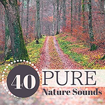 40 Pure Nature Sounds - Soothing Rain, Waterfall & Sea Music with Natural Background