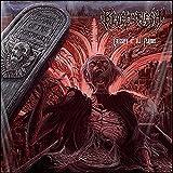 Emissary of All Plagues (Ltd.Vinyl) [Vinyl LP] - Reval in Flesh