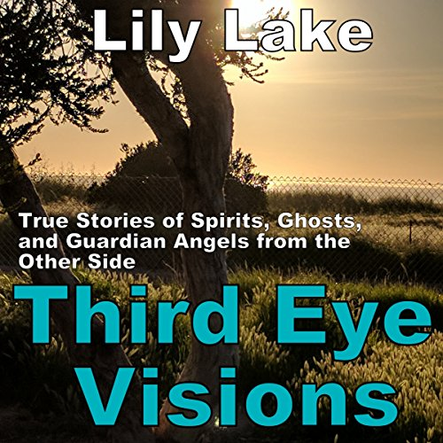Third Eye Visions audiobook cover art