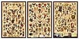 3 - Sailor Jerry Tattoo Flash Posters 12'x18' (Each poster is 12'x18' in size) Certified PosterOffice Prints with Holographic Sequential Numbering for Authenticity