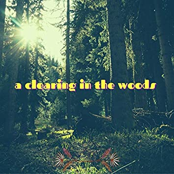 A Clearing In The Woods