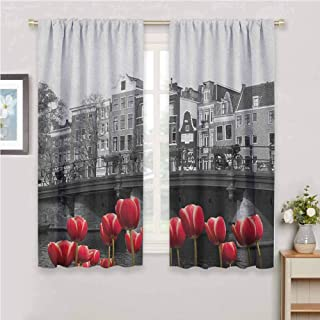 GUUVOR Black and White Room Darkened Heat Insulation Curtain Monochrome Photo of Amsterdam Canal with Red Tulips and Houses Living Room W42 x L72 Inch Black White and Red