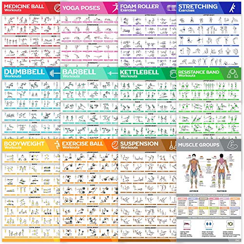 [12-PACK] Large Size Workout Poster Set - Perfect Workout Posters For Home Gym - Exercise Posters Include Dumbbell, Yoga Poses, Resistance Band, Kettlebell, Stretching, Barbell & More Fitness Charts