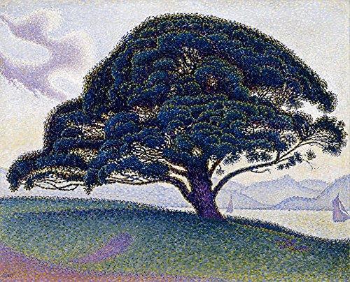 O Pinheiro de Boaventura Grande Árvore 1893 Pintura de Paul Signac na Tela em Vários Tamanhos (55 cm X 42 cm tamanho da imagem)