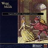 Wege zur Musik:Figaros Hochzeit