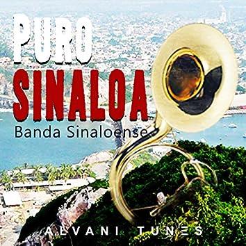Puro Sinaloa Banda Sinaloense