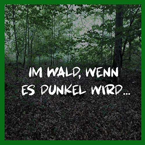 Im Wald, wenn es dunkel wird