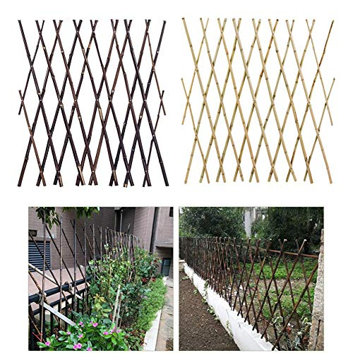 Garden Land Willow Expandable Plant Climbing Lattices Trellis Fence Support 23x70 Inch