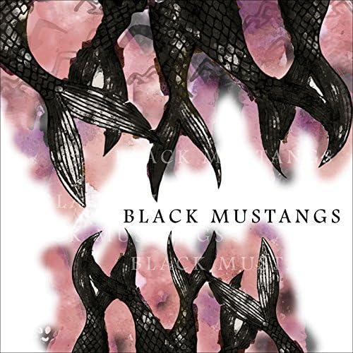 Black Mustangs