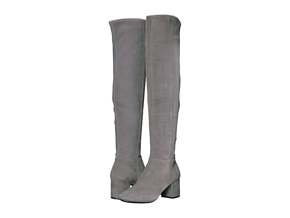 Cole Haan Elnora Over the Knee Boot (Stormcloud Suede) Women